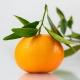 Csillogó mandarin illóolaj keverék
